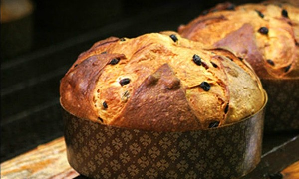 panettone_cover